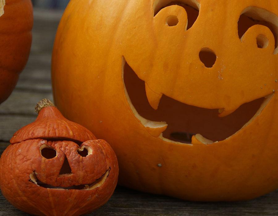 Cinco itens que não podem faltar na decoração de Halloween